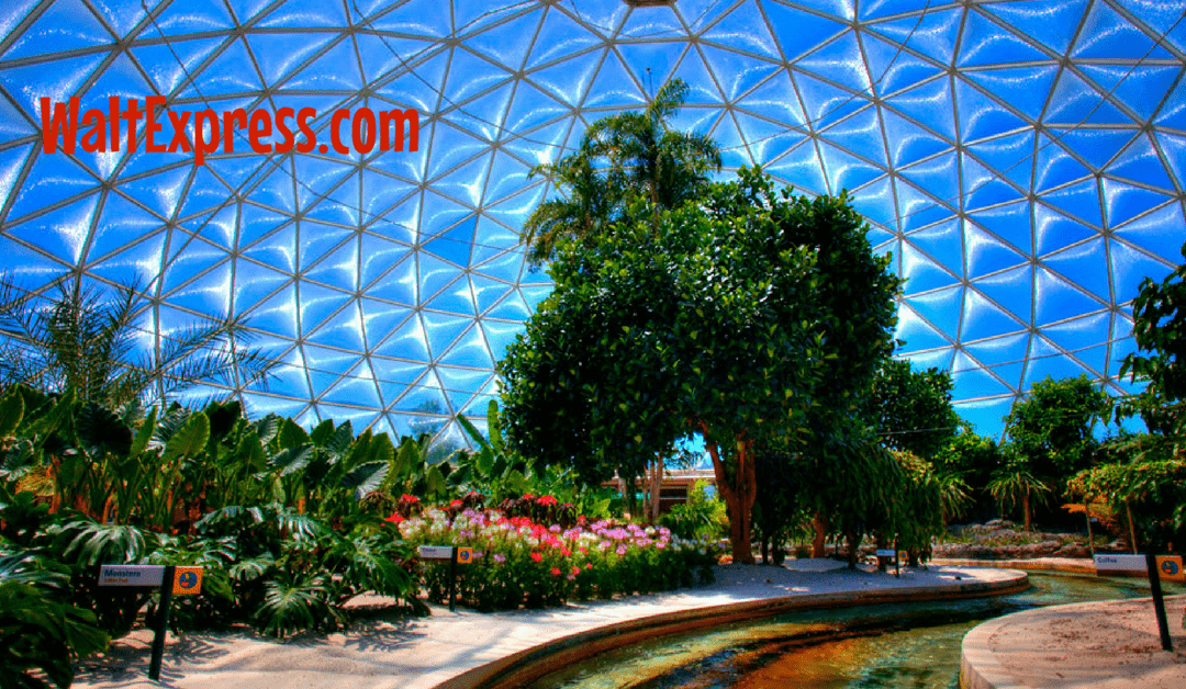 Video: Living with the Land at Epcot in Disney World