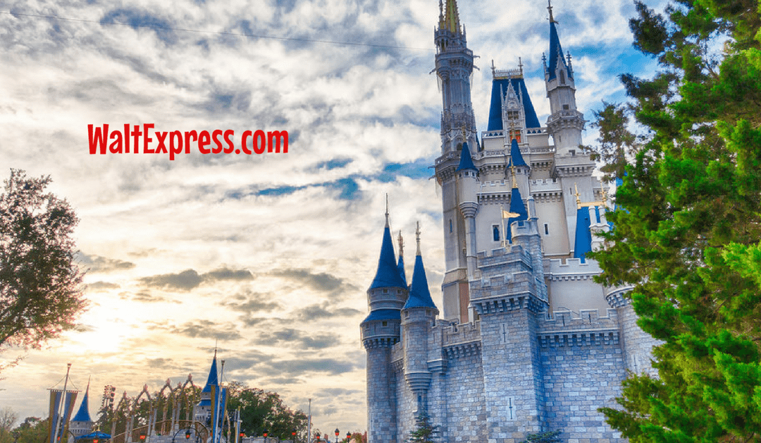 Disney World Re-Opens After Hurricane Irma On Tuesday, September 12th