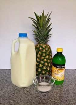 Disney World Copycat Recipes: The Dole Whip