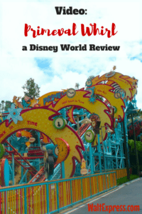 Primeval-Whirl-Disney-Animal-Kingdom-Rides