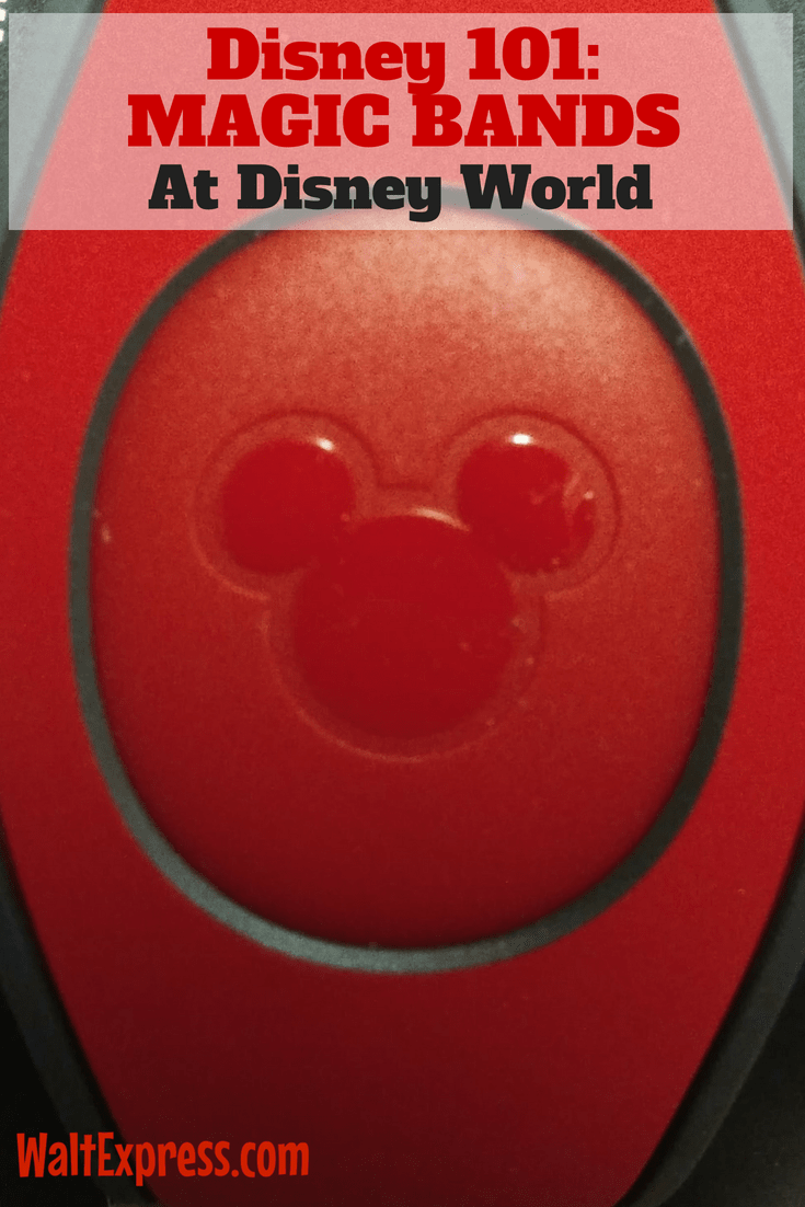 Disney 101: Magic Bands...Don't Leave Home Without Them!