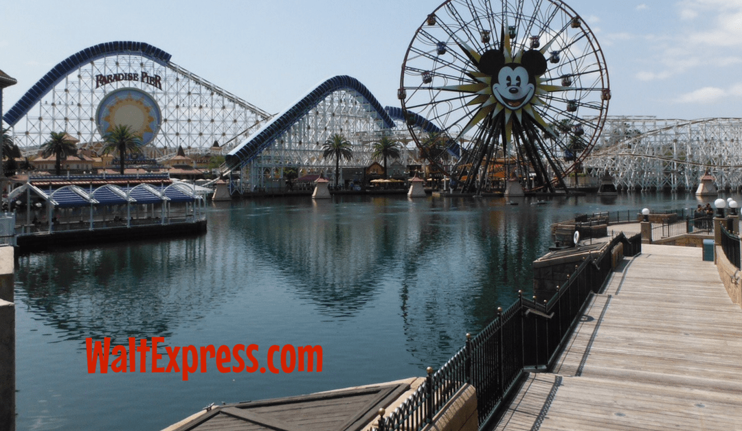 5 Reasons to runDisney in Disneyland