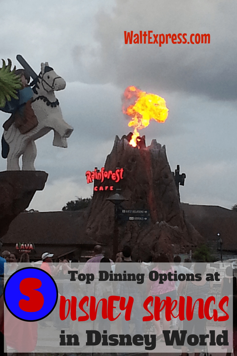 Best dining options disney world