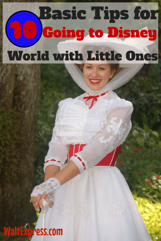 10 Basic Tips for Going to Disney with Little Ones