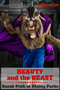 Sneak Peek from Disney's Beauty and the Beast in Disney Parks!