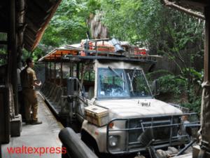 Kilimanjaro-Safaris-Animal-Kingdom-Disney-World