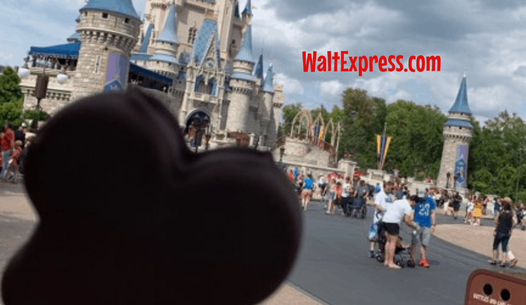 10 Tips To Survive The Summer Heat In Disney World