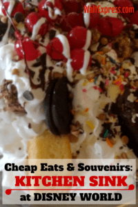 Cheap Eats and Souvenirs at Disney World: The Kitchen Sink