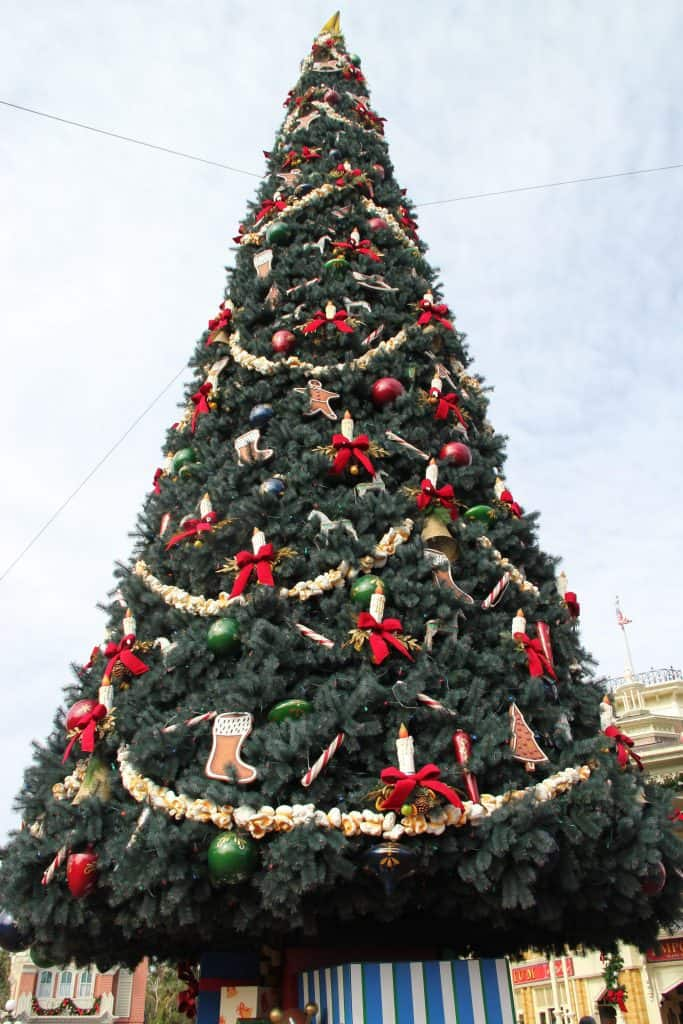 Top 5 Favorites At The Magic Kingdom During The Holidays