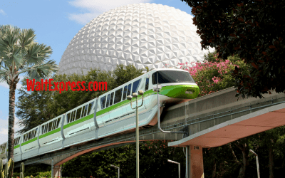What To Expect In Disney World During The Month Of February