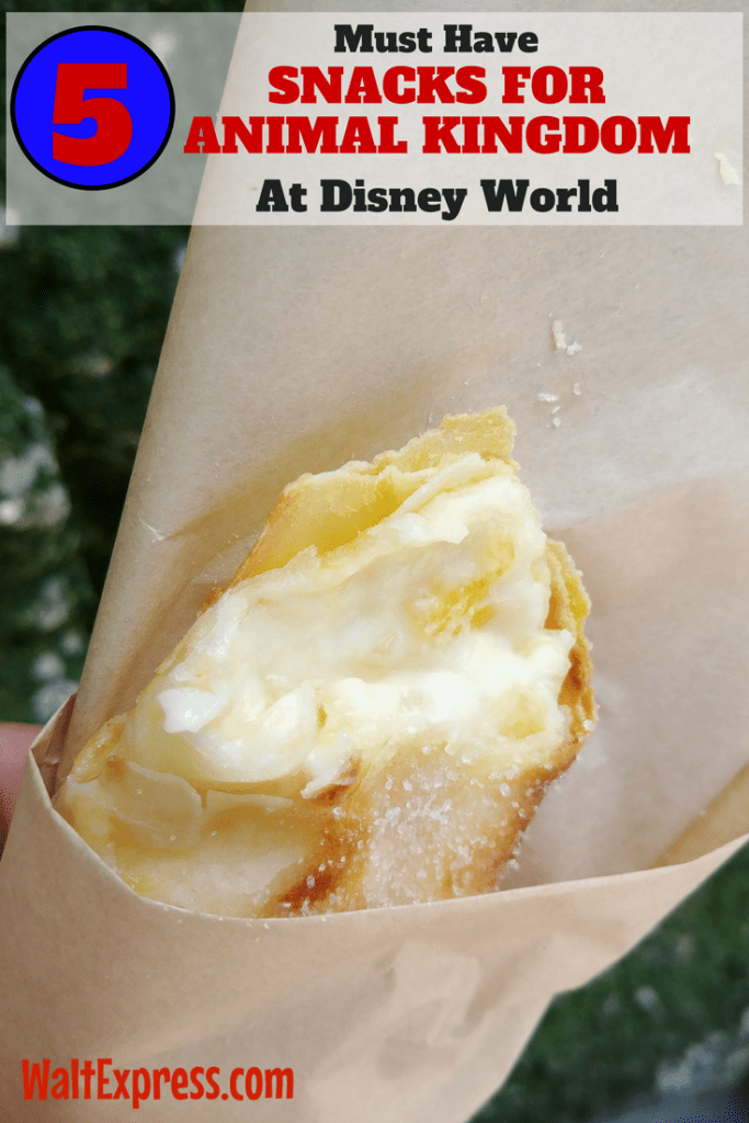 Top 5 Snacks at The Animal Kingdom You CANNOT Miss!