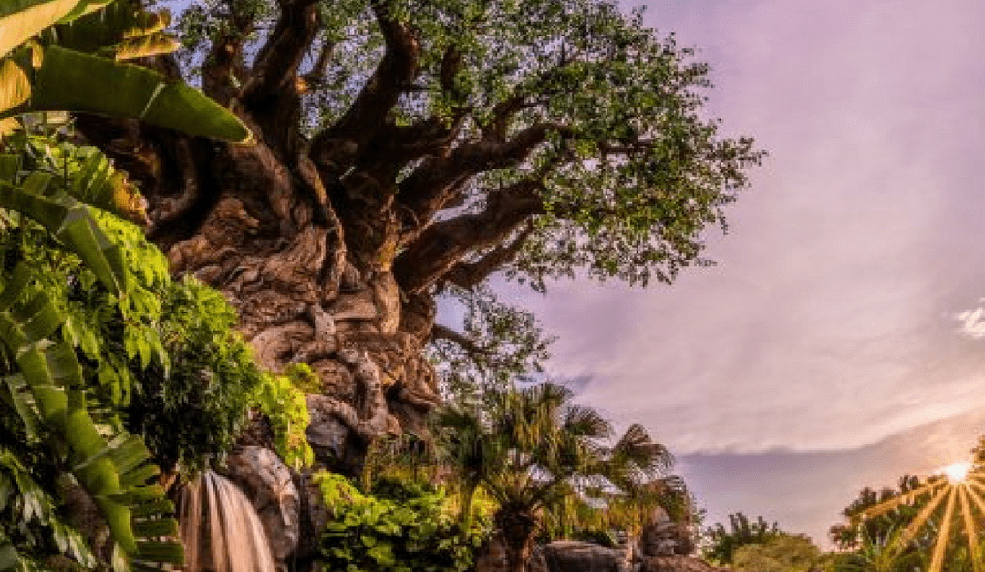 Disney's Animal Kingdom Plans 20th Anniversary Party For The Planet