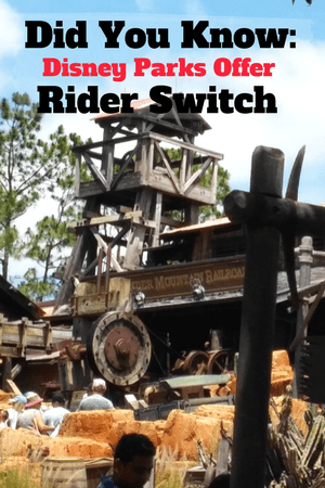 Did You Know: Disney Parks Offer Rider Switch To Make Your Trip Easier