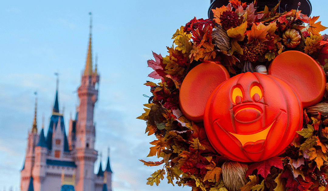 Breaking News: Disney Releases Ultimate Magical Package For Fall