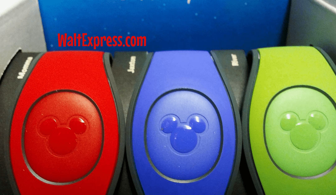 Disney 101: Magic Bands…Don't Leave Home Without Them!