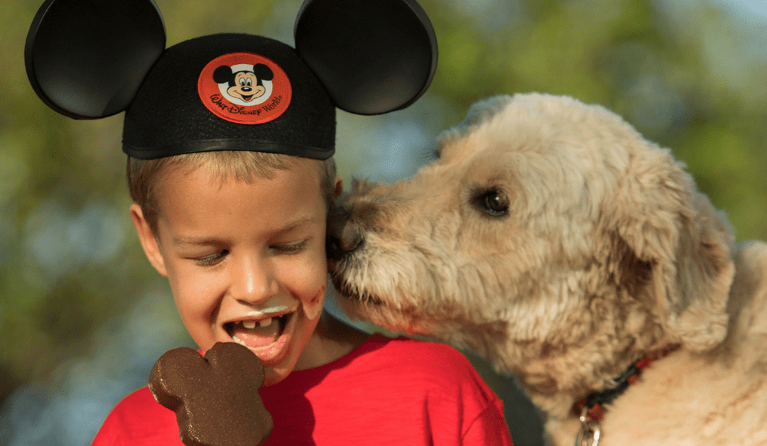 Disney Resort Update: Dog-Friendly Policy WILL Continue At Select Resorts