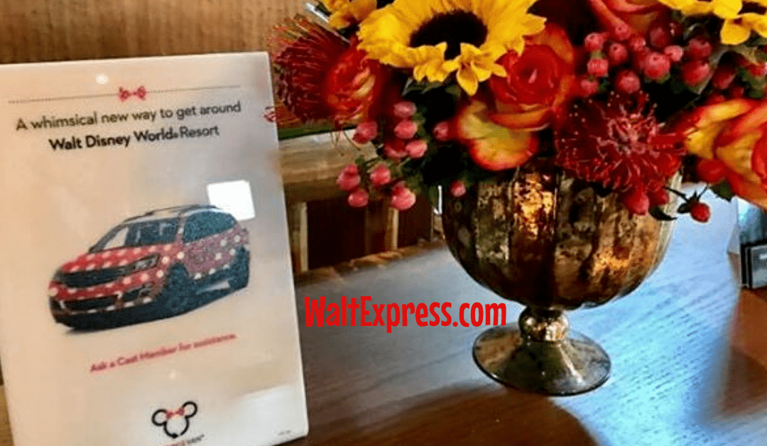 Minnie Van Transportation Service: A Disney World Review