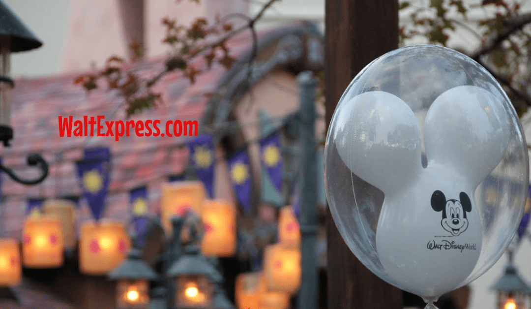 NEW Magical Experiences Coming To Disney World In 2019