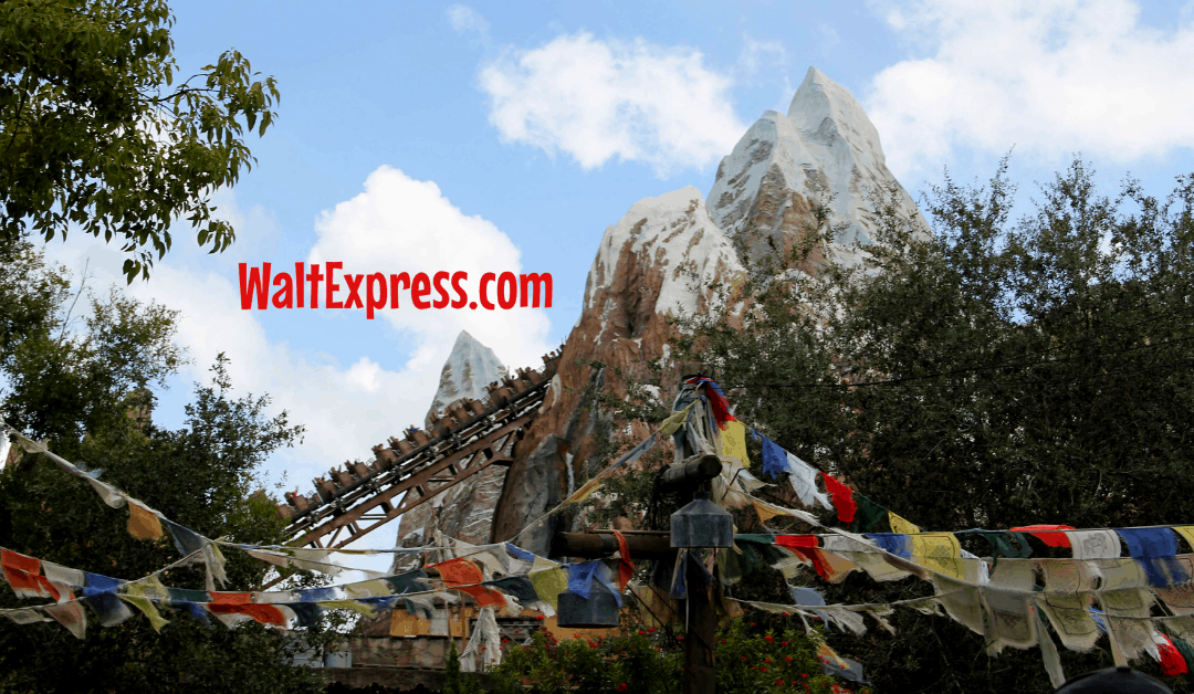 6 Fun Attractions At Disney World's Animal Kingdom For 10 Year Olds
