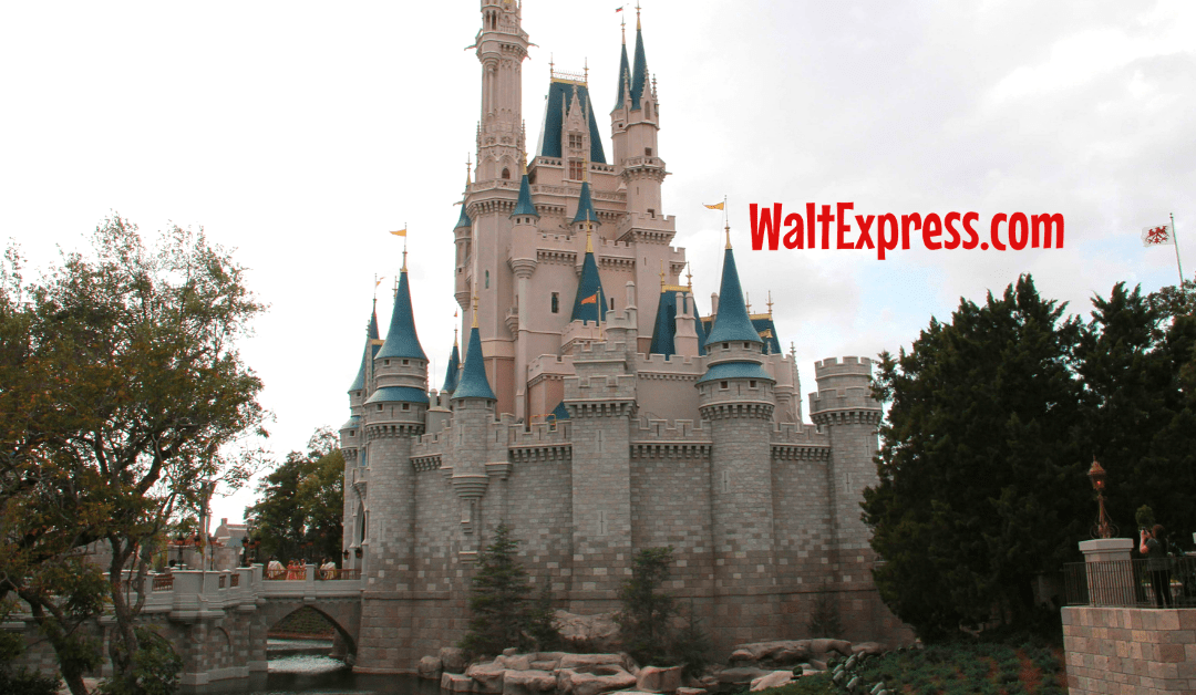 Top 8 Differences Between Disneyland And Disney World