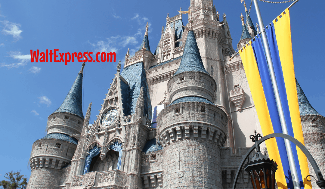 5 Things You Must Do On Your First Disney World Vacation