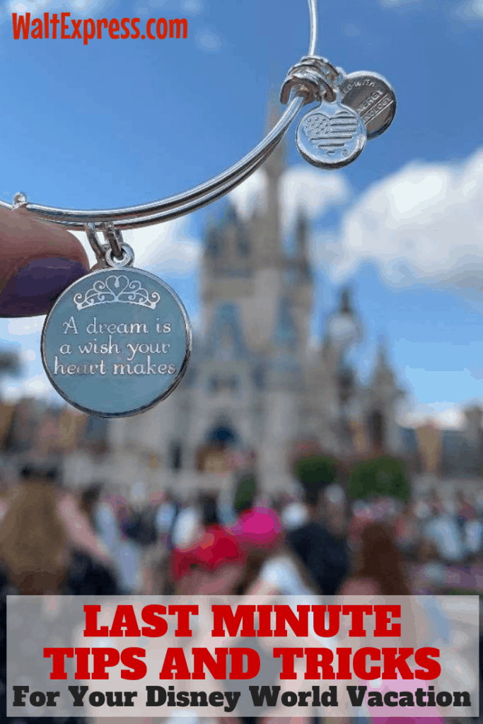 #waltexpress #disneyworld #disneytips disney world tips and tricks