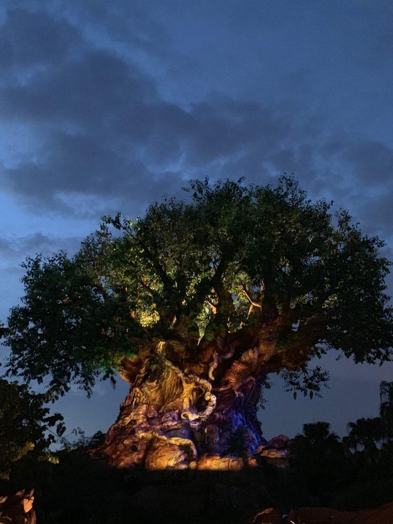 #waltexpress #disneyworld #disneyafterhours Disney After Hours Events