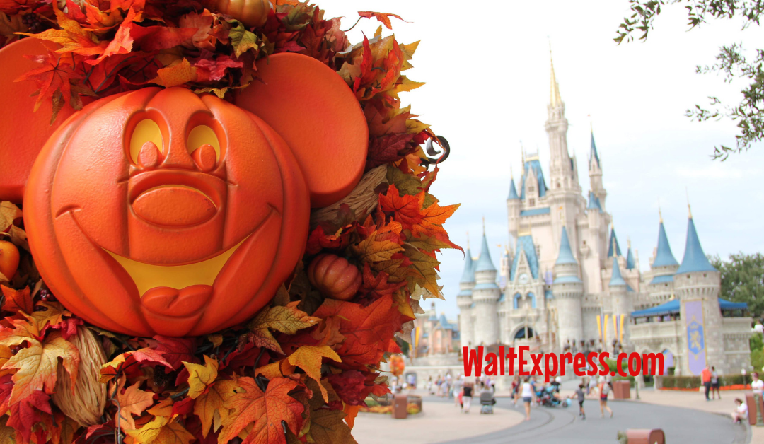 Guide To Disney World's 2019 Mickey's Not So Scary Halloween Party