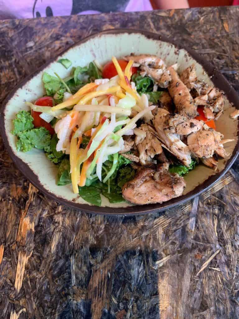 #waltexpress #disneyworld #disneydining #pandora Satu'li Canteen Dining Review