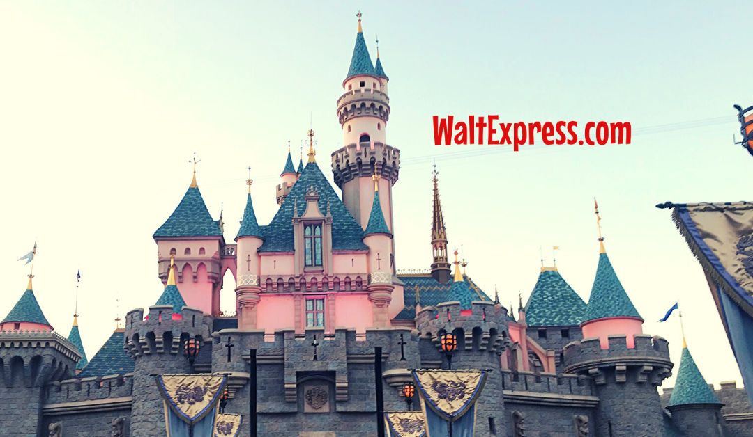 What Is MaxPass For Disneyland Tickets And Do I Really Need It?
