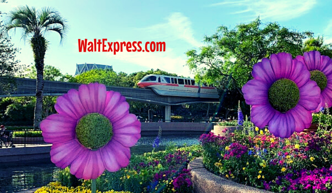 #WALTEXPRESS #DISNEYWORLD #DISNEYWORLDPARKS THINGS AT DISNEY WORLD