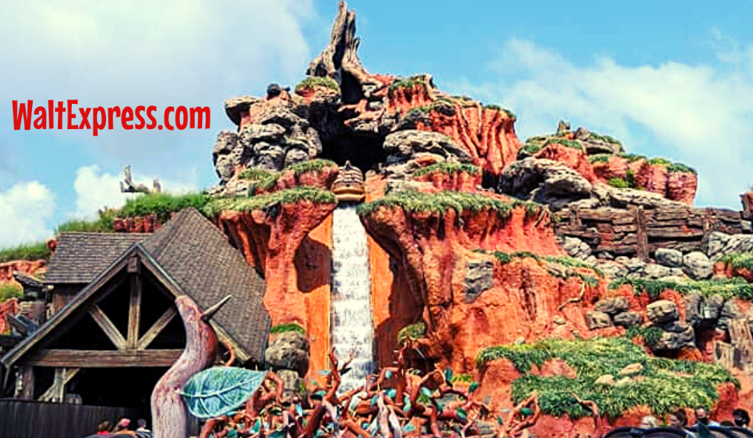 Is It Really THAT Hot? All About The Temperature At Disney World