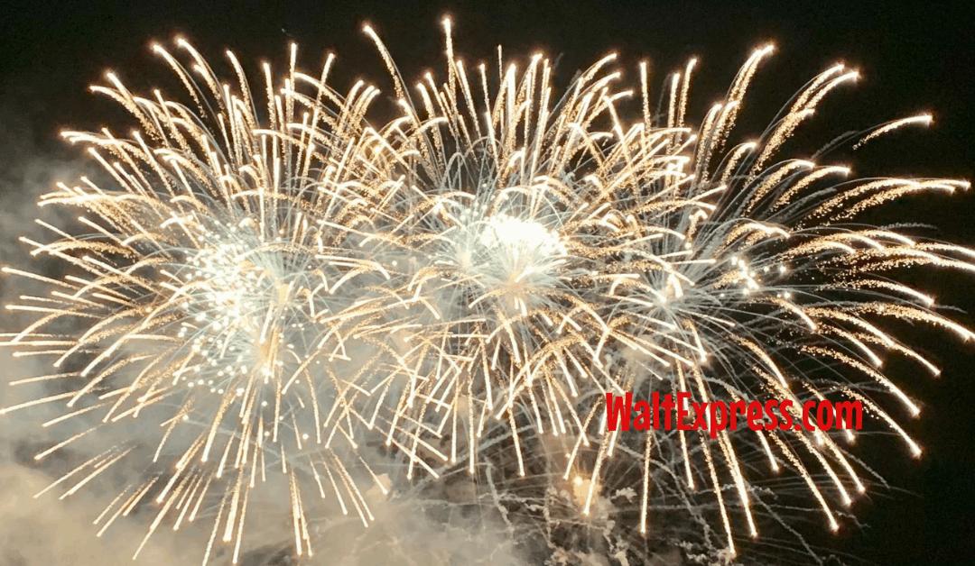 #waltexpress #disneyworld #disneyworlddiscount Early 2021 Discount Released