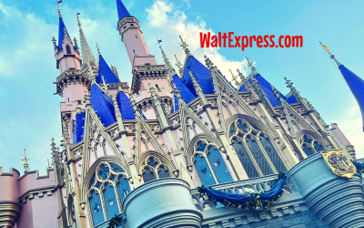 Four Things I Will NEVER Do At Disney World Again