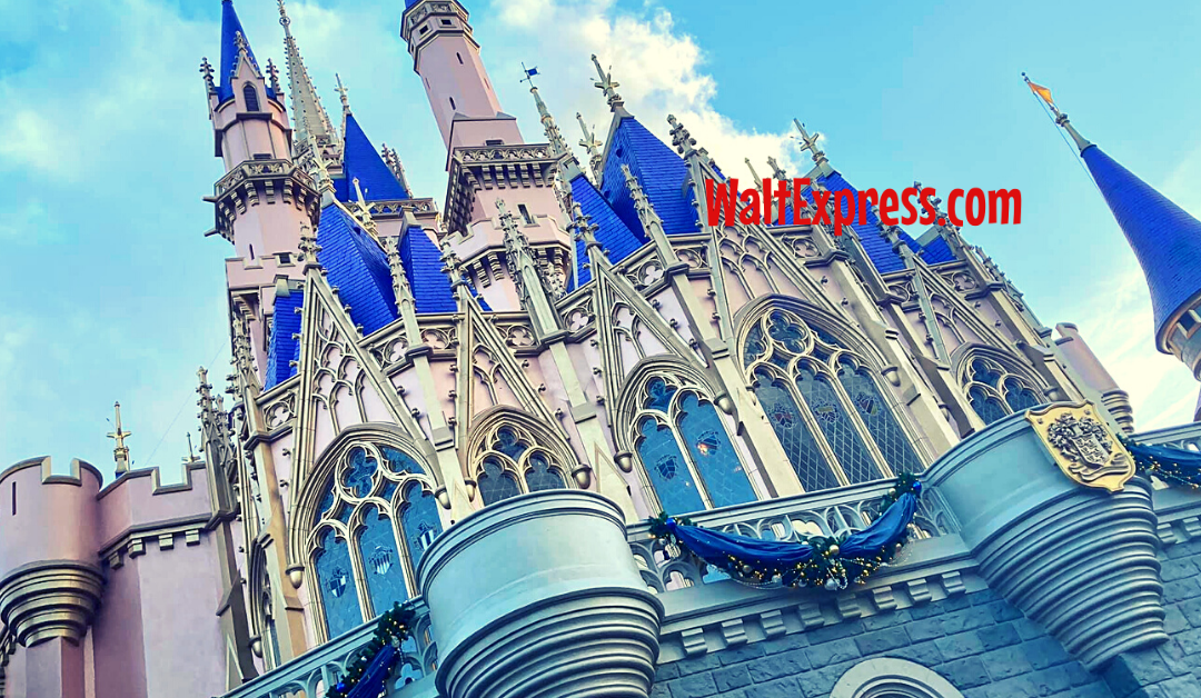 The Do's And Don'ts Of Using Disney Vacation Travel Planners