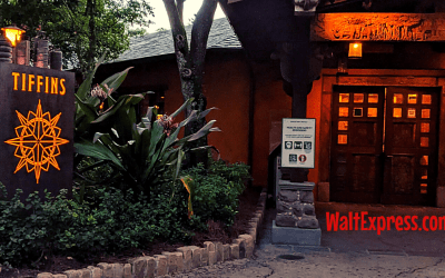 Tiffins Restaurant At Disney's Animal Kingdom Park Surprised Us