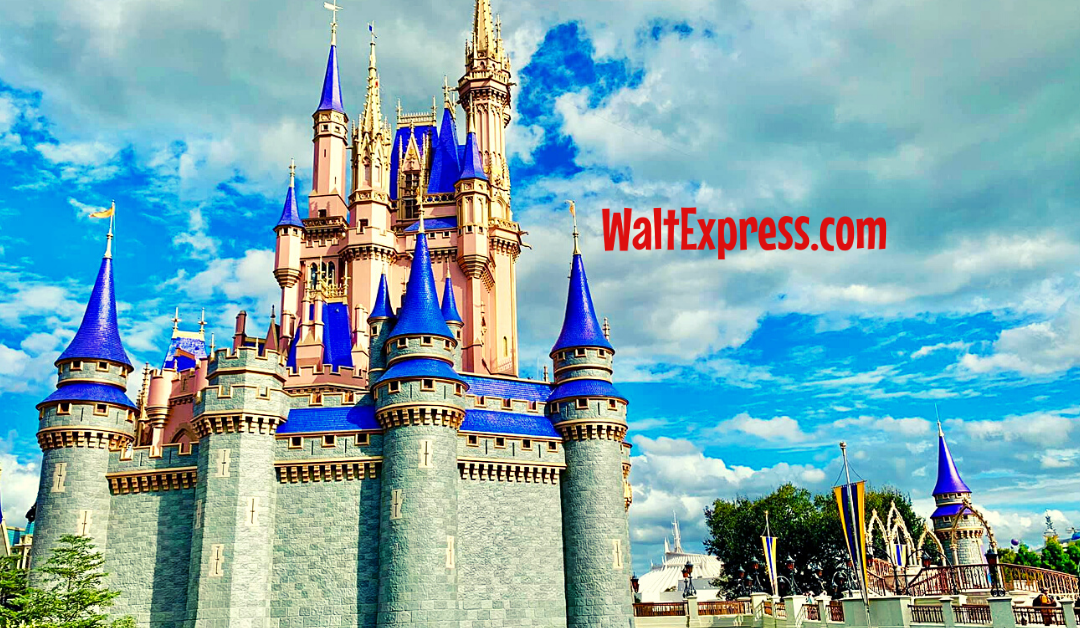 #waltexpress #disneyworld #disneyworldplanning avoid at disneys magic